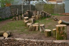 Ballance logs within a natural play area