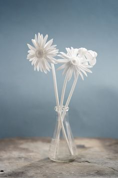 "A home accessory. An unforgettable gift topper. A housewarming gift. A way to say ""I love you."" These 3D printed daisies do it all."