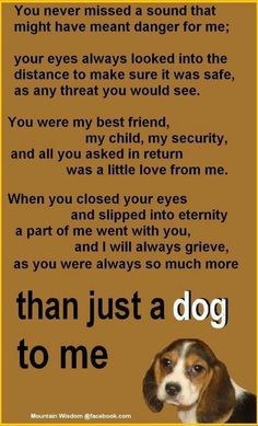 This is how I feel about my pup Chance! R.I.P. Chance (Bub)!
