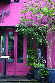 Pink store front in Sinsadong by Seoul Korea, via Flickr