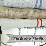 giveaway for you this week!    Would you like to win a $20 credit to Burlap Fabric.com?