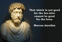 That which is not good for the bee-hive... Marcus #Aurelius Quote