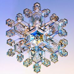 Imagine a huge chandelier made up of super-sized crystal snowflakes - perfect for my ice palace. Snow crystal up close - Ontario, Canada. Snowflake Photos, Snowflake Shape, Real Snowflakes, Things Under A Microscope, Winter Wonder, Patterns In Nature, Winter Scenes, Science And Nature, Fractal Art