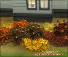 Autumn flowers vegetation at Sims by Mulena via Sims 4 Updates