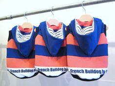 Dog Wear for French Bulldog