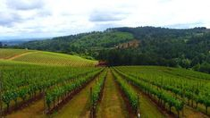Oregon's capital city of Salem can make an excellent base from which to explore all the great things there are to do and see in the surrounding Willamette Valley.