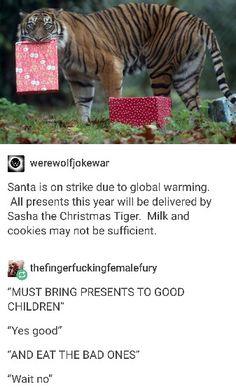 I want Sasha the Christmas Tiger to come to my house!