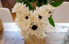 Szemek, fülek és az orr - máris olyan a csokor, mint egy igazi kiskutya!