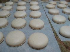Plain Macaroons the Thermomix way or by hand. Macaron or macaroon, it makes no difference really, just ask Auguste Escoffier. Macaron's are not hard, as long as you understand all the rules. Egg White Recipes, Almond Recipes, Yummy Recipes, Macarons, Cuisine Diverse, Macaroon Recipes, Thermomix Desserts, High Tea, Sweet Treats
