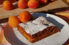 Marillen-Schoko-Kuchen