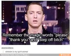Not really that big of an eminem fan, but this is funny. Sorry about the language.
