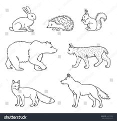 Set of stylized vector forest animals in contours. Sweet Drawings, Doodle Drawings, Animal Drawings, Fall Coloring Pages, Doodle Coloring, Coloring Books, Forest Drawing, Woodland Critters, Landscape Drawings