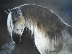 Oil on canvas #equineart #equinepainting #horse #lusitano