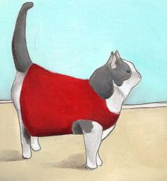 kitty in a little red sweater
