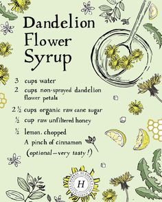 Sweeten Your Breakfast With Dandelion Flower Syrup - Health For Perfect Life Jamba Juice, Herbal Remedies, Home Remedies, Health Remedies, Cough Remedies For Adults, Dandelion Recipes, Dandelion Jam Recipe, Unfiltered Honey, Dandelion Flower