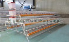 14 Best Chicken Layer Cages For Caged Chickens Amp Chicken
