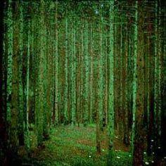 Klimt - mossy beauty.