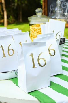 Less-Than-Perfect Life of Bliss: Sweet 16 Outdoor Movie Party: Sources and How-To's
