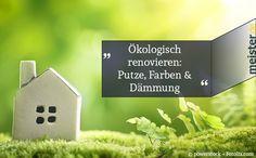 https://www.meister.de/blog/oekologisch-renovieren-putze-farben-daemmung/
