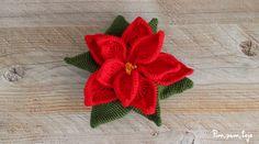 Cómo tejer una flor de pascua de ganchillo Christmas Crochet Patterns, Iris, Cactus, Animals, Crochet Flowers, Craft, Knitting Needles, Crochet Edgings, Felting