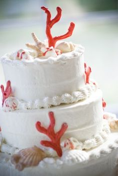 Seashells usually remind me of bathroom decorations, but I love the coral on this cake!