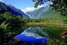 Wellington ( New Zealand )