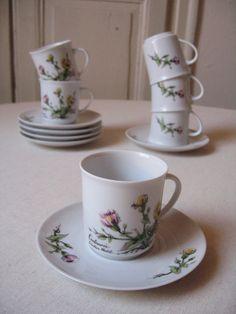 6 Tasses Winterling création Mobil / Tasse à café en porcelaine / Décor herbier botanique fleur / Collector / Vintage Allemagne-France
