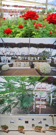 DIY wedding in a greenhouse
