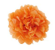 Pom Pom orange €5.50
