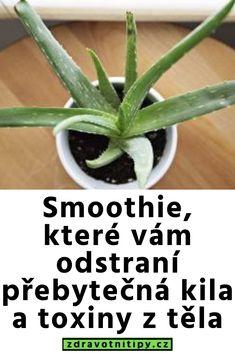 Smoothie, které vám odstraní přebytečná kila a toxiny z těla - zdravotni tipy Aloe, Green Beans, Herbs, Vegetables, Cooking, Smoothie, Plants, Fitness, Canvas
