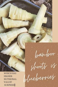Did you know that bamboo shoots are a super food? Bamboo shoots are rich in minerals and vitamins many of which we struggle to get otherwise. www.bambooleaftea.com Bamboo Shoots, Bamboo Leaves, Superfoods, Blueberry, Minerals, Vitamins, Vegetables, Desserts, Tailgate Desserts