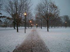 Tappan Square, winter.