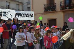 01 - Cercavila Trobades d'Escoles en Valencià 2013 a Pedreguer (141) Foto: laveupv.com