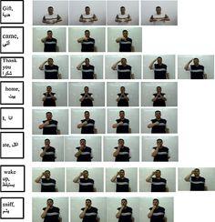 Arabic Sign Language (ArSL)