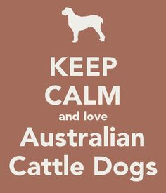 Keep Calm..... and love Australian Cattle Dogs♥