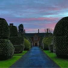 1000 Images About Hedge Amp Garden Ideas On Pinterest