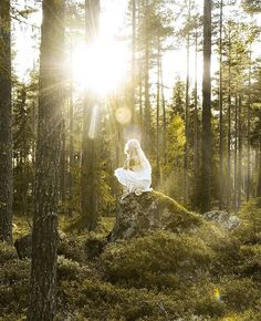 « In the heart of the deepest forest there is another world. » Photo: Jonna Jinton