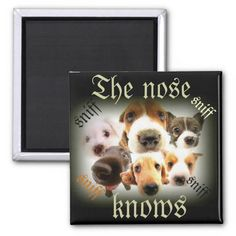 The Nose knows/dog magnet