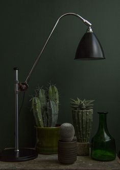 Green Collection with Lamp | Ken Marten | Flickr