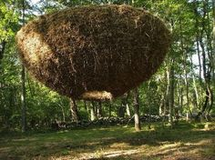 Karin van der Molen: Heaven on earth, hay, rebar, jute. I-Park Environmental Biennial, East Haddam, United States, 2009