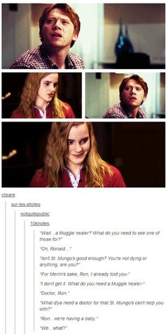 Life after Hogwarts-it's just the type of conversation they would have. But it would be better is hermione was with Fred and he didn't die Harry Potter World, Harry Potter Love, Harry Potter Universal, Harry Potter Fandom, Harry Potter Memes, Fandoms, Dr Who, It's My Life, Harry Potter Tumblr Posts