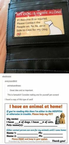 Good idea for your wallet… create cards in case of an emergency to notify people that your dog is home alone needs help! Diy Pour Chien, Animals And Pets, Cute Animals, Dog Training Tips, Safety Training, Pet Health, Dog Care, Dog Owners, Dog Treats