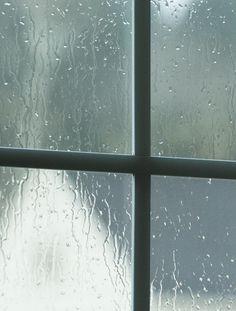 I positively love a rainy day...( Alisa Burke photography)
