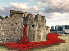 The moat that surrounds the Tower of London has long stood empty and dry. But now, what may look like gushing blood from it's very walls, is actually something beautiful.