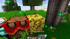 Minecraft Lucky Block Survival Games 11 - Something Feels Off