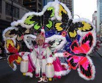 A member of the Fancy division, which is the beauty highlight of the Philadelphia Mummers parade.