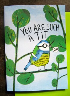 You are such a tit  Card by KatieAbeyDesign on Etsy