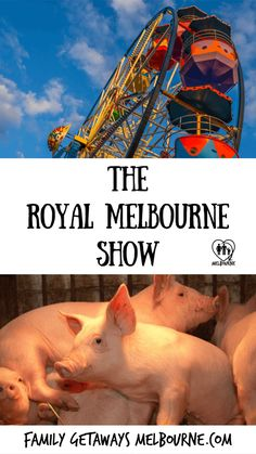 The Royal Melbourne Show is held annually in the month of October with rural competitions, rides, stalls and the selection of show bags will delight everyone Melbourne Cbd, Melbourne Australia, Carnival Rides, Family Getaways, School Holidays, Travel Around The World, Where To Go, Day Trips, Agriculture