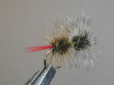 Thumbing Through Some SBSs - Page 113 - Drake Magazine Online Fly Fishing Gear, Fishing Tips, Fishing Tackle, Gold Fronts, Fly Shop, Fly Tying Patterns, Magazine Online, Trout, Drake