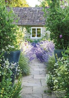 lovely cottage flowers